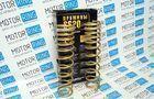 Пружины холодной навивки задней подвески Gold Progressive для  Лада Приора (Универсал), ВАЗ 2111 (переменный шаг)_1