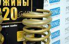 Пружины холодной навивки задней подвески Gold Progressive (переменный шаг) Лада Приора, Калина, Ваз 2110-12_3
