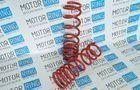 Пружины передние «Фобос» Стандарт без занижения для ВАЗ 2101-07_1