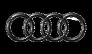 Корректоры е-газа для AUDI