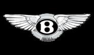 Корректоры е-газа для Bentley