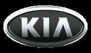 Корректоры е-газа для KIA