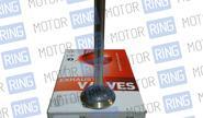Комплект клапанов AMP PLAE005/006 для 16V Daewoo Nexia