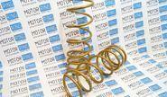 ХалявING! Пружины холодной навивки передней подвески SS20 Gold Progressive (переменный шаг) на ВАЗ 2108-21099, 2110-2112, 2113-2115