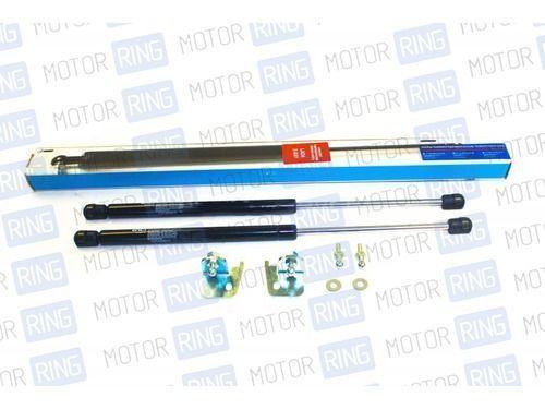 Комплект пневмо-гидравлических упоров капота для Lada XRAY_1
