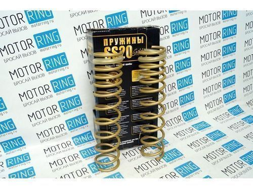 Пружины холодной навивки задней подвески SS20 Gold Progressive (переменный шаг) на Лада Калина_1